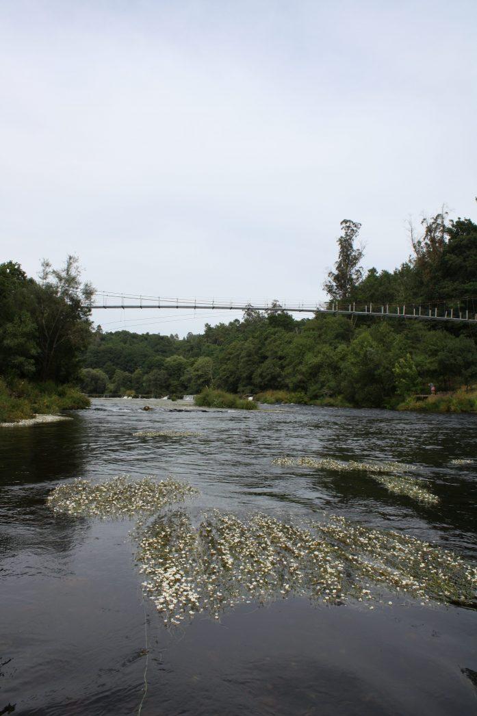 Galician Aquaculture Strategy